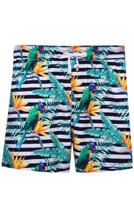 Parrots Swim Shorts