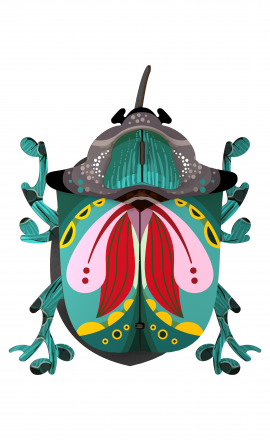 Beetle Paul
