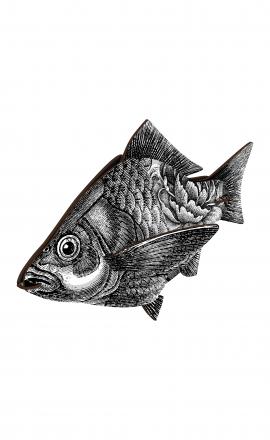 Fish Entrepreneur