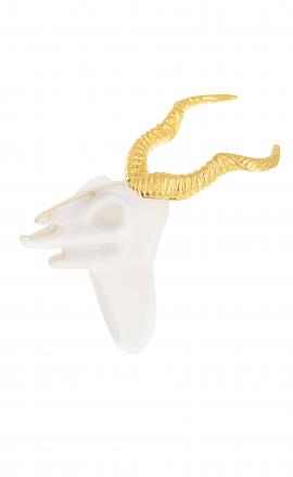 Skull Kudu Bull Ring